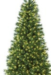 6' Pre-Lit Artificial Christmas Tree, Deluxe Cashmere with Clear Lights