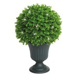 LED Lit Topiary Trees or Bush