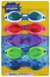 Swim Accessories & Pool Maintenance