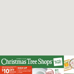 Our Latest Ads | Christmas Tree Shops andThat!