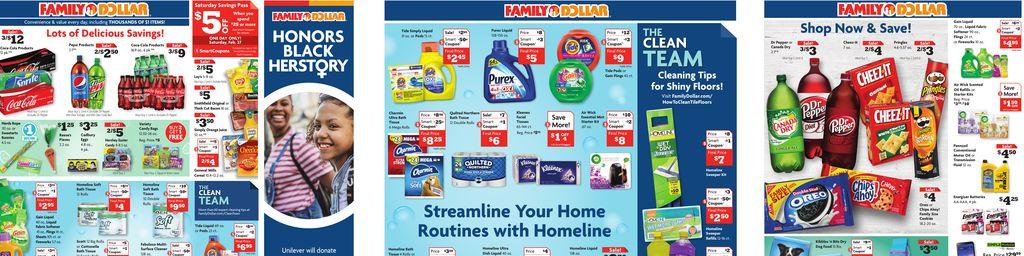 Family Dollar Weekly Ad in Ashburn
