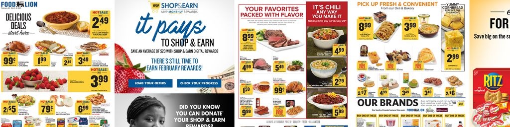 Food Lion Weekly in Ashburn