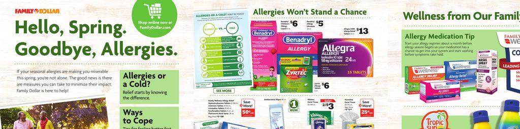 Family Dollar Spring Allergy Book in Ashburn
