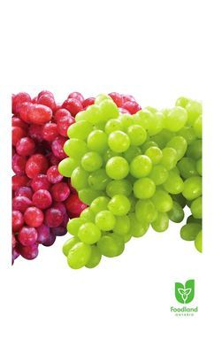 Extra Large Green Seedless Grapes