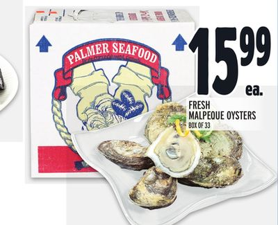 FRESH MALPEQUE OYSTERS