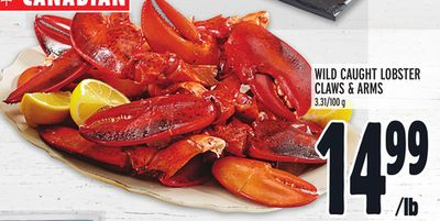 WILD CAUGHT LOBSTER CLAWS & ARMS