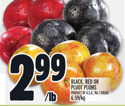 BLACK, RED OR PLUOT PLUMS