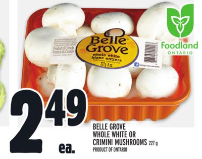 BELLE GROVE WHOLE WHITE OR CRIMINI MUSHROOMS