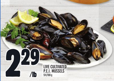 LIVE CULTIVATED P.E.I. MUSSELS