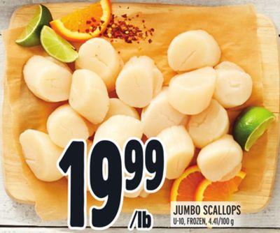 JUMBO SCALLOPS