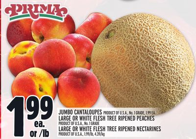 JUMBO CANTALOUPES PRODUCT OF U.S.A., NO. 1 GRADE, 1.99 EA. LARGE OR WHITE FLESH TREE RIPENED PEACHES PRODUCT OF U.S.A., NO. 1 GRADE LARGE OR WHITE FLESH TREE RIPENED NECTARINES PRODUCT OF U.S.A., 1.99