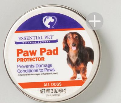 Buy 21st Century™ Essential Pet™ Dog Paw Pad Protector in