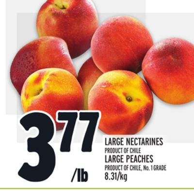 LARGE NECTARINES