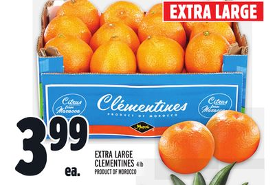 EXTRA LARGE CLEMENTINES