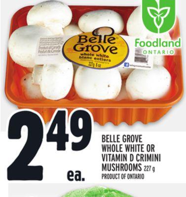 BELLE GROVE WHOLE WHITE OR VITAMIN D CRIMINI MUSHROOMS