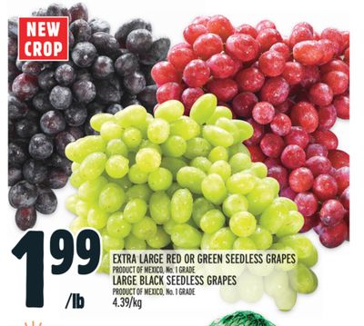EXTRA LARGE RED OR GREEN SEEDLESS GRAPES