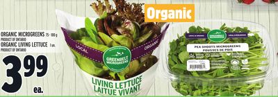 ORGANIC MICROGREENS 75 - 100 g PRODUCT OF ONTARIO OR ORGANIC LIVING LETTUCE 1 un. PRODUCT OF ONTARIO