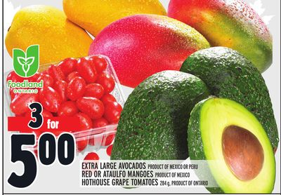 EXTRA LARGE AVOCADOS PRODUCT OF MEXICO OR PERU RED OR ATAULFO MANGOES PRODUCT OF MEXICO HOTHOUSE GRAPE TOMATOES 284 g, PRODUCT OF ONTARIO