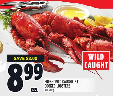 FRESH WILD CAUGHT P.E.I. COOKED LOBSTERS