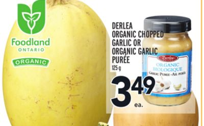 DERLEA ORGANIC CHOPPED GARLIC OR ORGANIC GARLIC PURÉE