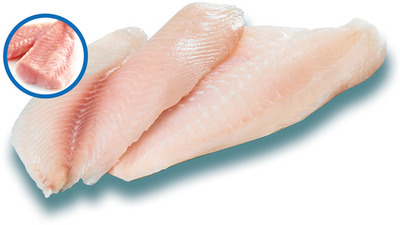 FILETS DE TILAPIA FRAIS CHARNU | THICK CUT FRESH TILAPIA FILLETS