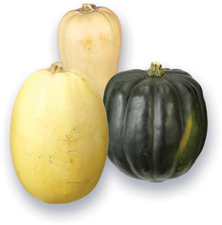 COURGES | SQUASHES
