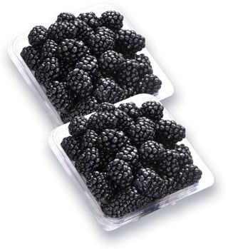 MÛRES   BLACKBERRIES