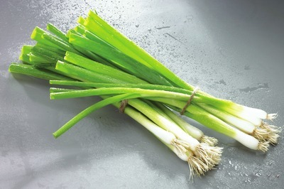 OIGNONS VERTS| GREEN ONIONS