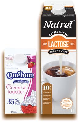 CRÈME ULTRA'CRÈME 35% QUÉBON NATREL | QUÉBON ULTRA'CREAM, NATREL CREAM