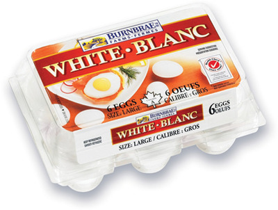 OEUFS BLANCS BURNBRAE | BURNBRAE WHITE EGGS
