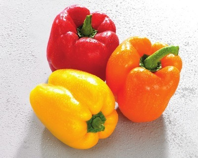 POIVRONS ROUGES, JAUNES, ORANGE BIOLOGIQUES | HOTHOUSE RED, YELLOW, ORANGE PEPPERS