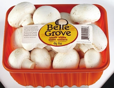 BELLE GROVE WHOLE WHITE MUSHROOMS