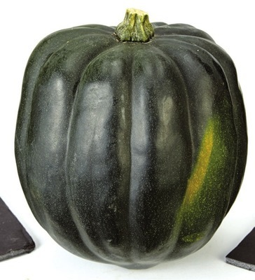 ACORN, BUTTERNUT OR SPAGHETTI SQUASHES
