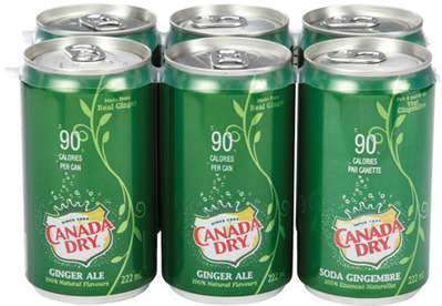 COCA-COLA OR CANADA DRY MINI CAN SOFT DRINKS