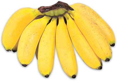 MINIATURE BANANAS