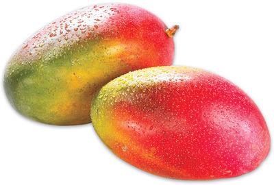 MANGOES OR ATAULFO MANGOES