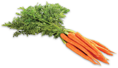 BUNCH CARROTS or CELERY