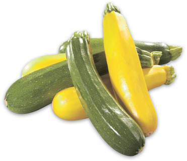 GREEN OR YELLOW ZUCCHINI