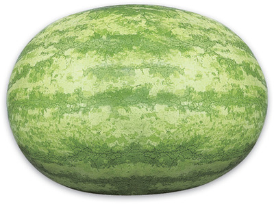 WHOLE SEEDLESS WATERMELONS