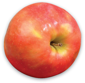 PINK CRIPPS APPLES