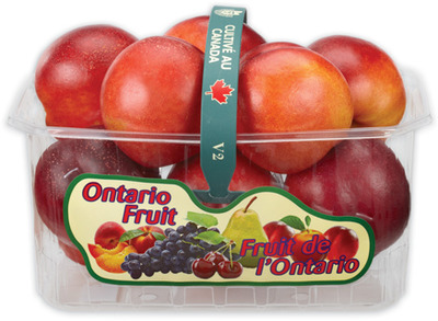 NECTARINES 2 L, PRODUCT OF ONTARIO PEACHES 3 L, PRODUCT OF ONTARIO, CANADA No. 1 GRADE
