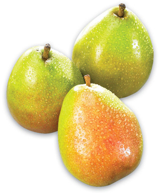 ANJOU OR BARTLETT PEARS