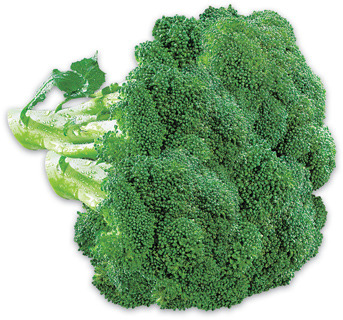 Broccoli PRODUCT OF CANADA OR U.S.A. Belle Grove Whole White Mushrooms 227 g, PRODUCT OF ONTARIO Mann's Broccoli Cole Slaw or Rainbow Salad 340 g, PRODUCT OF U.S.A.