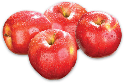 Gala, Cortland, Empire, McIntosh, Spartan or Golden Delicious Apples PRODUCT OF ONTARIO, CANADA EXTRA FANCY GRADE, Tomatoes on the Vine PRODUCT OF ONTARIO