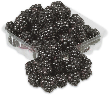 RASPBERRIES 170 g PRODUCT OF U.S.A., No. 1 GRADE BLACKBERRIES 170 g PRODUCT OF MEXICO