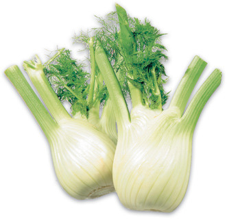 ANISE-FENNEL