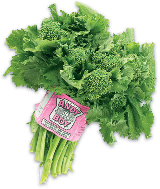 Rapini or Anise-Fennel