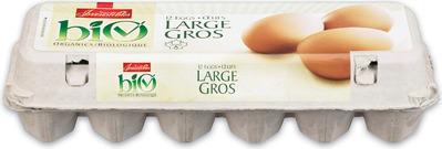 IRRESISTIBLES BIO ORGANIC BROWN EGGS