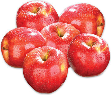 GALA OR RED DELICIOUS APPLES