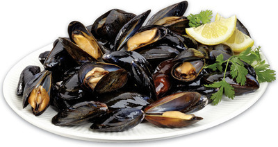 FRESH LIVE CULTIVATED PEI MUSSELS